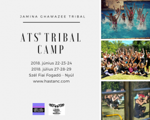 Tribal Camp 2018.